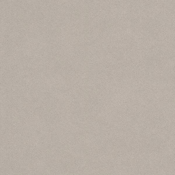 Rasch b.b. Home Passion 5 Vlies Tapete 479409 Uni beige